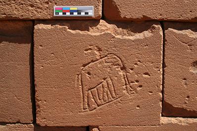 Graffito Elephant 4